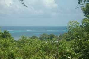 Roatan Real Estate on Caribbean Island Real Estate   Roatan Land For Sale By Owner And By